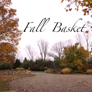 Fall Wine Basket, Free Shipping in NJ